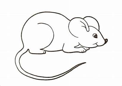 Mouse Template Templates Colouring Pages Animal Crafts