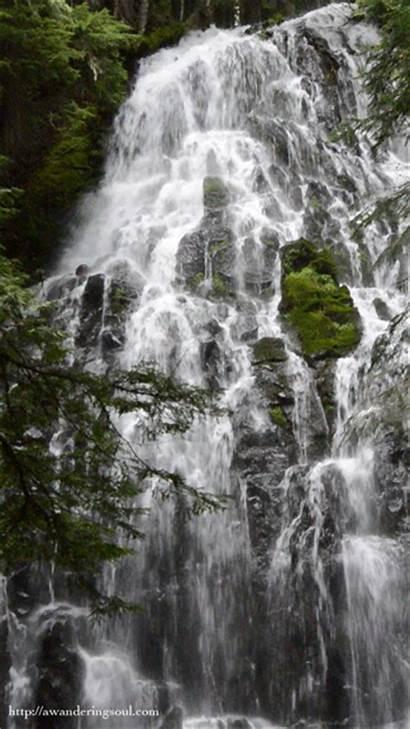 Oregon Hood Falls Forest Mount Waterfall Ramona