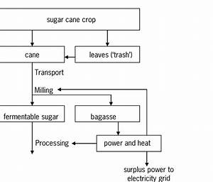 Flow Chart For Production Of Fermentable Sugar From Sugar