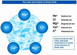 Quick Electrolytes Guide For Every Dialysis Technician