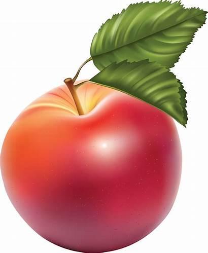 Apple Transparent Clipart Clip Fruit Pngimg Cliparts