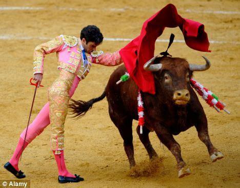 Bull fighting back on TV: Spain brings back live bull ...