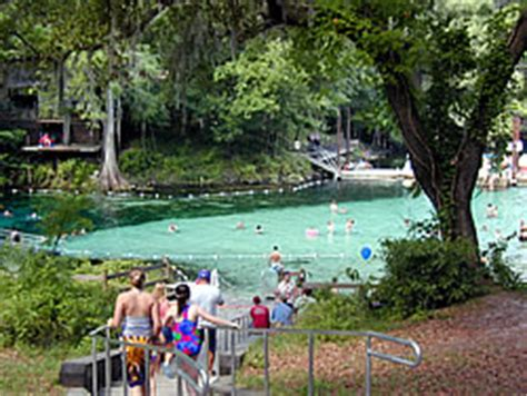 suwannee river motel fanning springs fl point of view home page