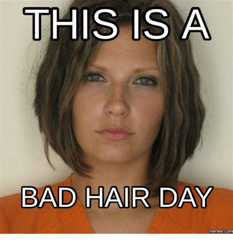 Bad Hair Day Meme - this is a bad hair day memes com breaking all the rules song meme on sizzle