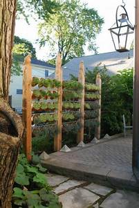 Sichtschutz Mit Pflanzen : den ppigen sichtschutz im garten akzentuieren ~ Michelbontemps.com Haus und Dekorationen