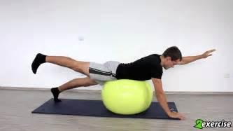 übungen mit pezziball krafttraining f 252 r ausdauersportler arm und beinstreckung auf dem pezziball