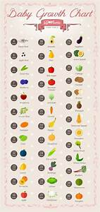 Baby Fruit Growth Chart Pin On This Makes Me Smile