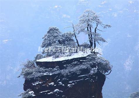 Tianmen Mountain - Tianmen Mountain National Forest Park