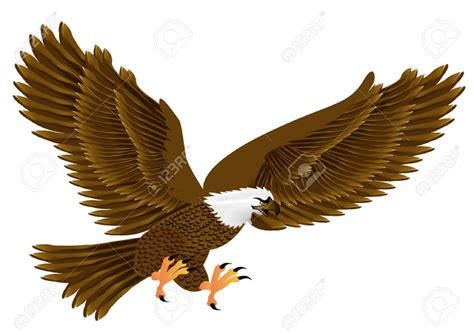 Clip Eagle Flying Eagle Clipart 101 Clip