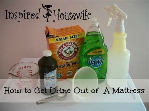 how to clean urine out of a mattress 5 cheap effective ways to clean up after your