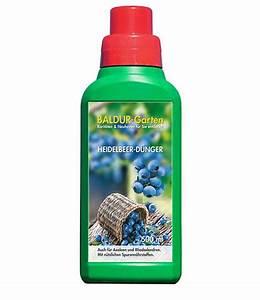Heidelbeere Im Kübel : heidelbeere reka blue d nger micro al baldur garten ~ Lizthompson.info Haus und Dekorationen
