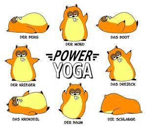 yogi sprüche glückwünsche geburtstag 50 sprüche und zitate über das leben