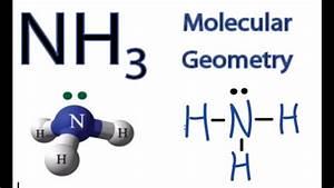 Nh3 Molecular Geometry    Shape And Bond Angles  Ammonia