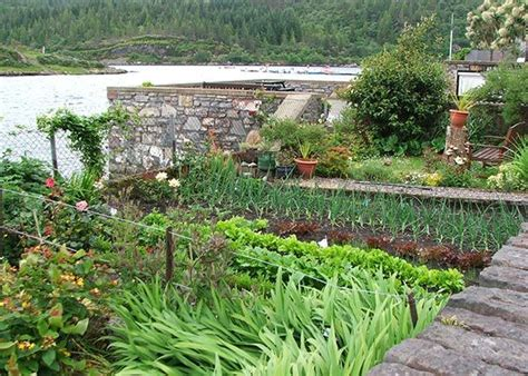 rooftop vegetable gardens roof top vegetable garden roof garden pinterest rooftop vegetable gardens 12221 write teens