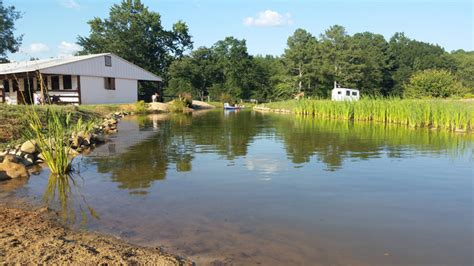 Swimming Pond : Forget An In-ground Swimming Pool, This Guy Built His Own
