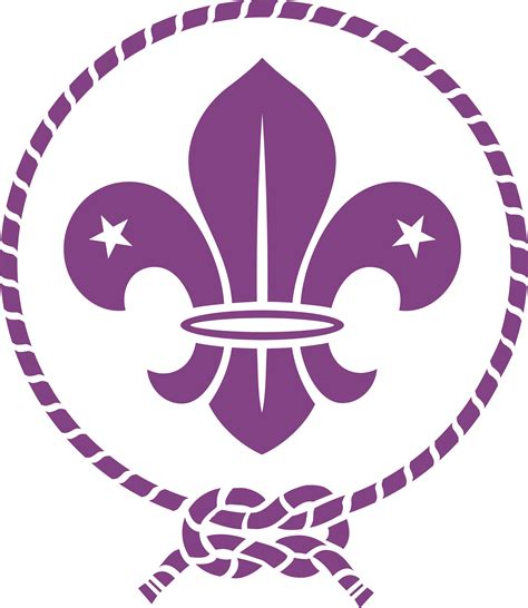 WOSM Logo Vector Icon Template Clipart Free Download