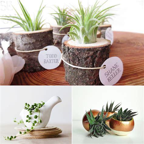 best office desk plants good desk plants in interior greenvirals style