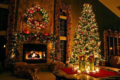 Christmas Tree  Tree's Collection For Christmas 2013