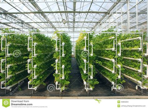 home plans with indoor greenhouse stock photo image of house soilless growing