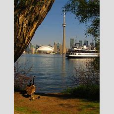 Centre Island (toronto)  All You Need To Know Before You