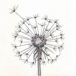 Top Dandelion Drawing Tumblr Images for Pinterest Tattoos