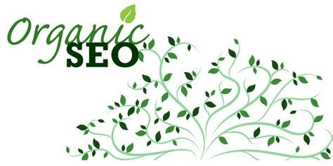 organic seo guidelines to a seo strategy for an ecommerce