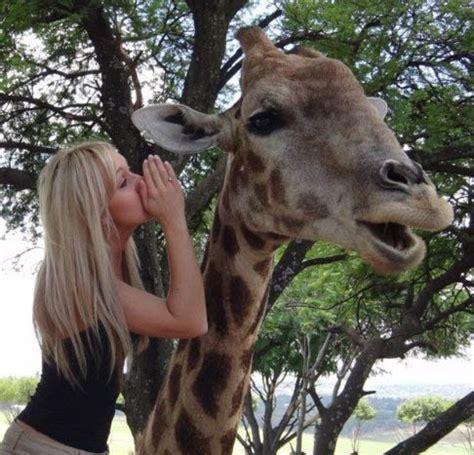 Drunk Giraffe Meme - year 70 days ago meme lol funny relatable reaction funny gif quotes
