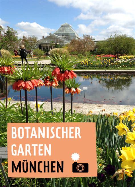 Botanischer Garten München Nymphenburg Menzinger Straße 65 by Ein St 252 Ck Vom Gl 252 Ck Botanischer Garten M 252 Nchen