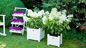 Porte Plante Une Touche Fleurie Dans La Maison WESTWING