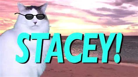 happy birthday stacey epic cat happy birthday song