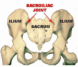 Physical Therapy Database  Sacroiliac Joint Pain