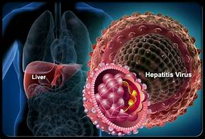 HEPATITIS | SYM... Hepatitis B