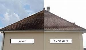 Demoussage Toiture Ardoise : demoussage toiture tarif traitement des tuiles avignon 84 ~ Premium-room.com Idées de Décoration