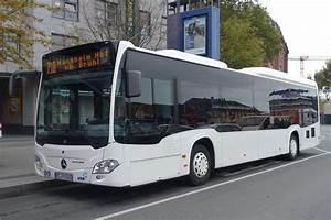 Bus Mannheim Berlin : mercedes citaro c2 le hoffmann mannheim bus ~ Markanthonyermac.com Haus und Dekorationen