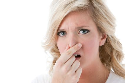 Geruch Im Kühlschrank Neutralisieren by Die 4 Besten Hausmittel Gegen K 252 Hlschrankgeruch