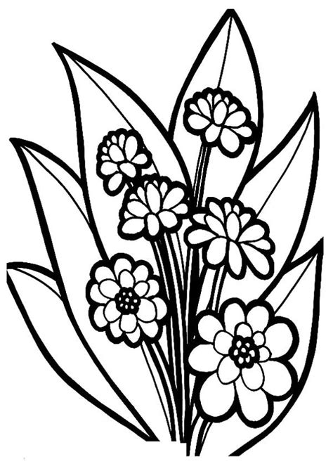 fancy flower bouquet coloring page color luna