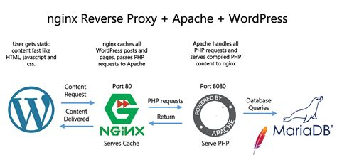 How To Configure Nginx Reverse Proxy Wordpress Cache For