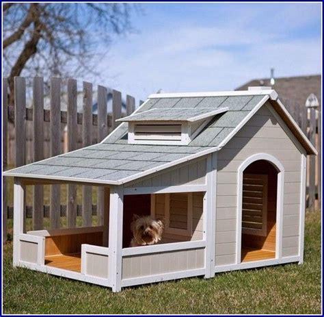 dog houses  multiple dogs extra large dog houses