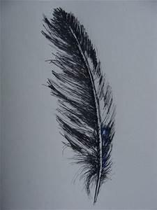 Dessin De Plume Facile : dessin la plume plume au pinceau du kercorb ~ Melissatoandfro.com Idées de Décoration