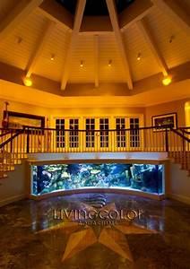 Custom Residential Aquarium - Ocean Experience
