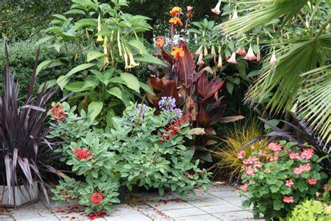 Der Traum Vom Garten by Der Traum Vom Mittelmeer Im Eigenen Garten