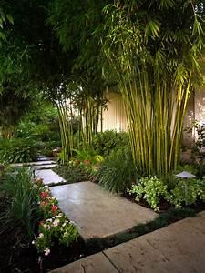 Bambus Pflanzen Sichtschutz : bambus im garten pflanzen bambus im garten pflanzen bambus im garten new garten ideen bambus ~ Sanjose-hotels-ca.com Haus und Dekorationen
