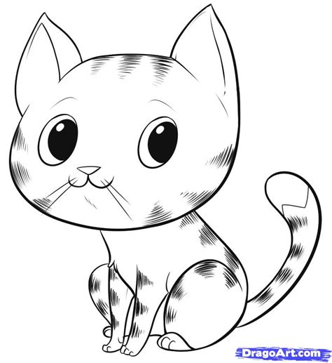 draw  easy cat step  step pets animals