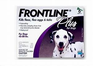 FRONTLINE Plus For Dogs 20-40kg - 6 pipettes