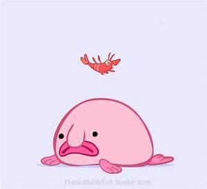 Blobfish Cartoon Gif | Adultcartoon.co