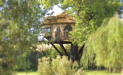 Best Images About Treetop Holidays By Blue Forest On