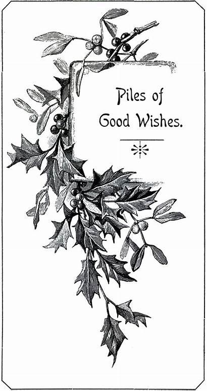 Christmas Holly Tags Graphics Tag Printable Clipart