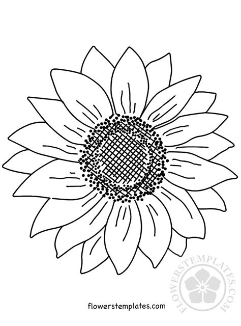 large sunflower coloring page flowers templates