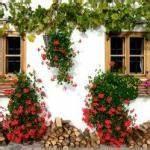 Tröpfchenbewässerung Selber Bauen : rankger ste rankgitter kletterhilfen co garten pflanzen ~ Lizthompson.info Haus und Dekorationen