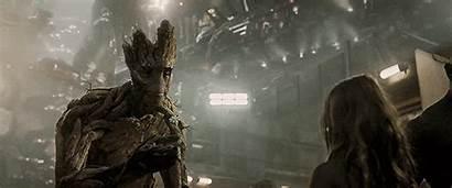 Galaxy Guardians Groot Flower Gifs Film Marvel